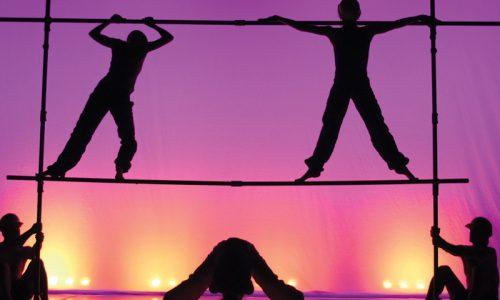Prisms – interview med Kathy Casey, kunstnerisk leder af Montreal Danse