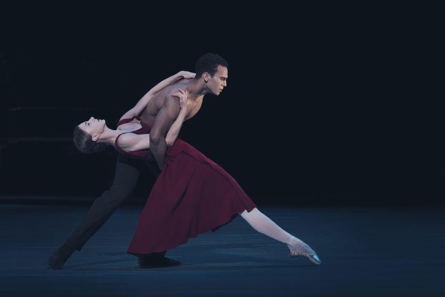 Persistent Persuation. Dans2Go. Det Kgl. Teater, sæson 2020-2021. Foto: Camilla Winther