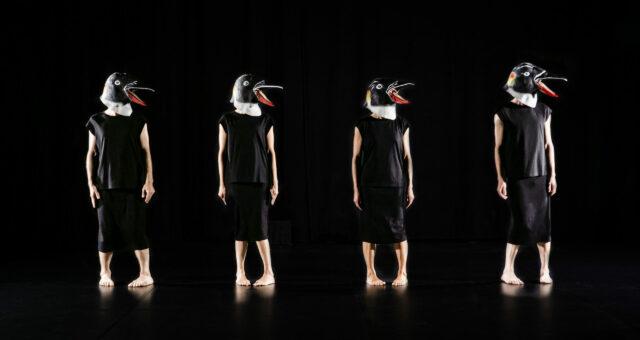 Skøn pingvindans af Granhøj Dans